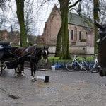 Brugge (Belgio) Biada e acqua fresca